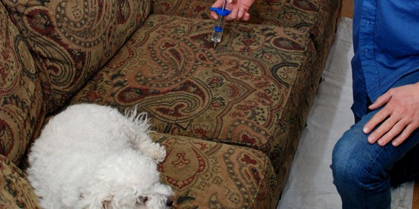 Nettoyage de meuble 2